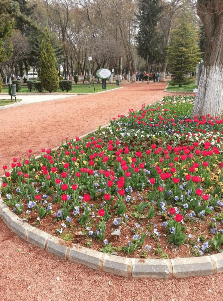 Kavaklık Parkı