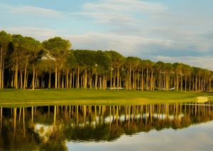 carya-golf-club
